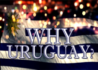 What Do You Love About Uruguay?